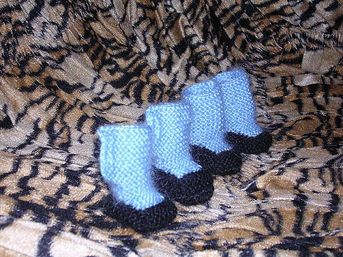 вязание комбинезона для собак мелких